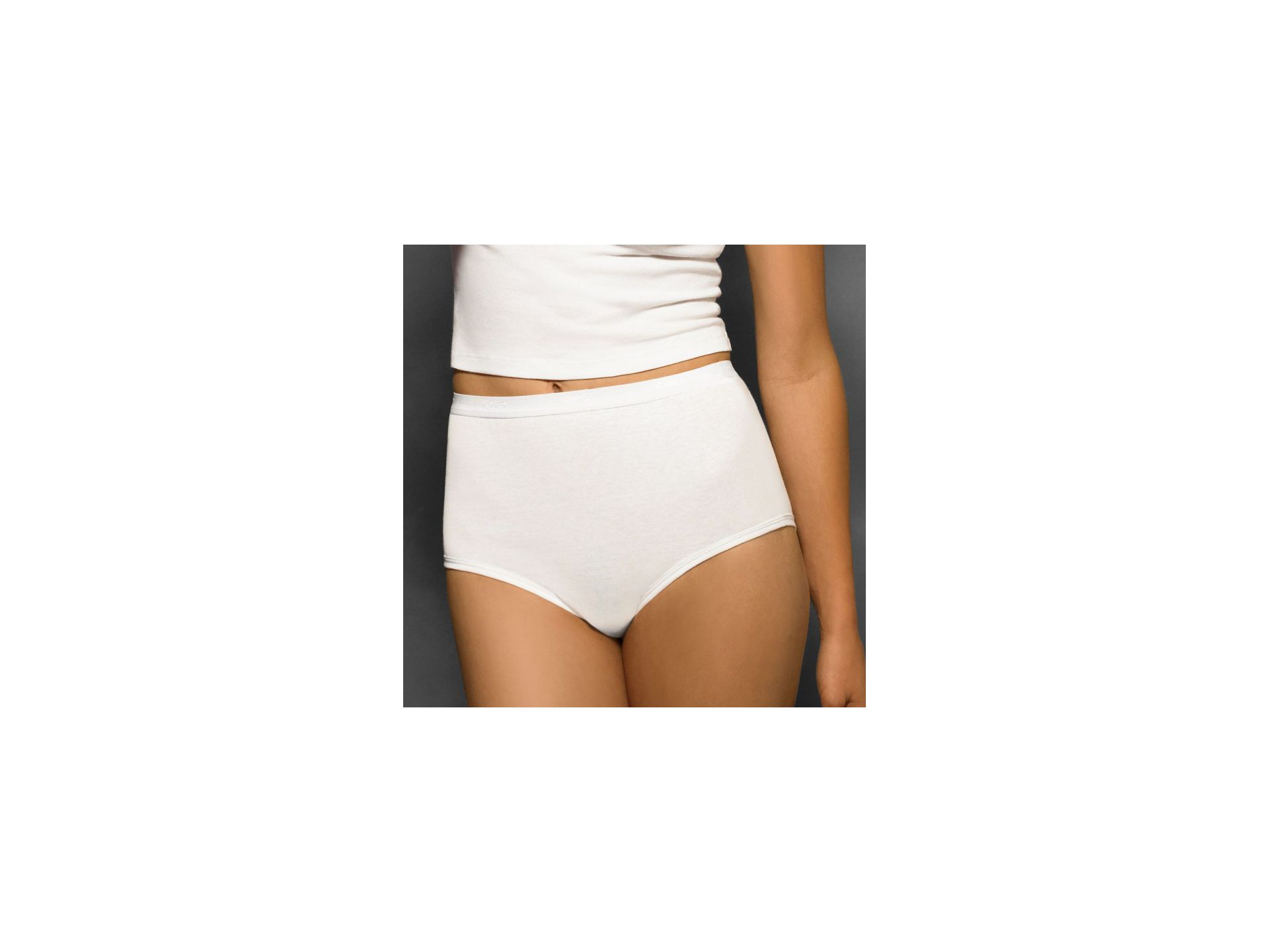 Hanes Women Classics Brief 3-Pack cw40wh